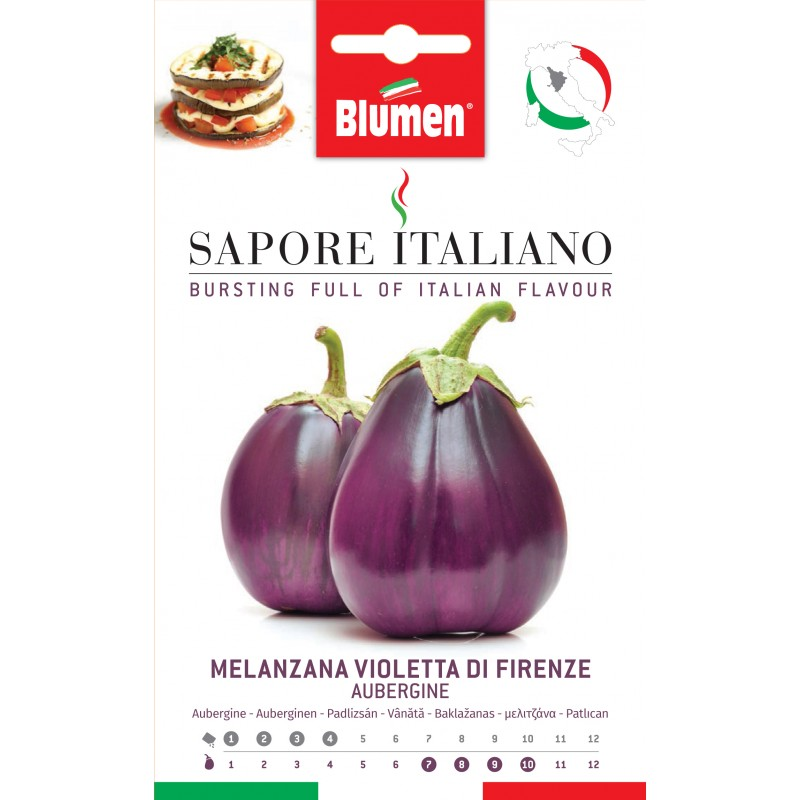 Melanzzani Violetta di Firenze - Regionen Italiens