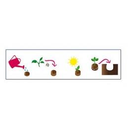 Kokos Quelltaps mit Netz, 100% torffrei und biologisch abbaubar. - Microgreens