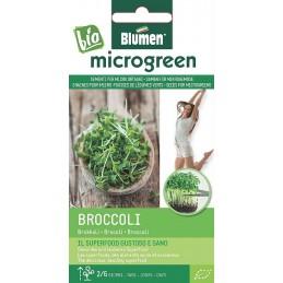 Broccoli- Microgemüse Gesundes und leckeres Superfood, BIO zertifiziertes Saatgut - Raritäten