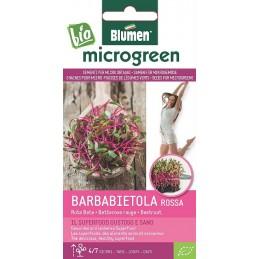 Rote Rüben/ rote Bete - Microgemüse Gesundes und leckeres Superfood, BIO zertifiziertes Saatgut - Samenspezialitäten