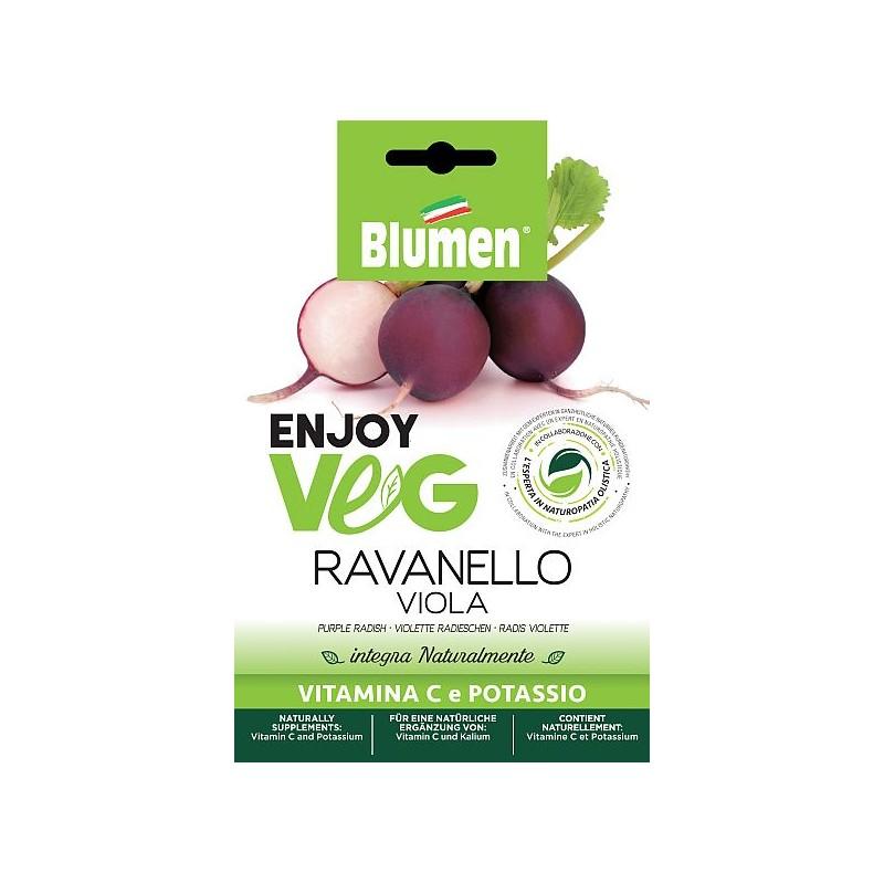 Enjoy Veg violette Radieschen Samen - Regionen Italiens