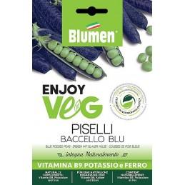 Enjoy Veg blauschotige Erbsen Baccello Blu Samen - Regionen Italiens
