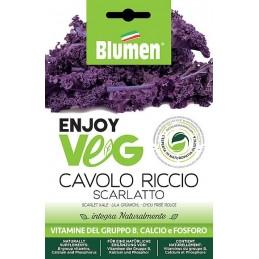 Enjoy Veg lila Grünkohl Scarlatto Samen - Regionen Italiens