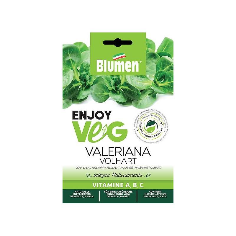 Enjoy Veg Feldsalat Valeriana (winterhart) Samen - Regionen Italiens