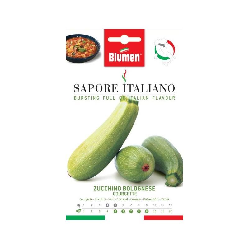 Grüne Zucchini Bolognese - Gemüseanbau