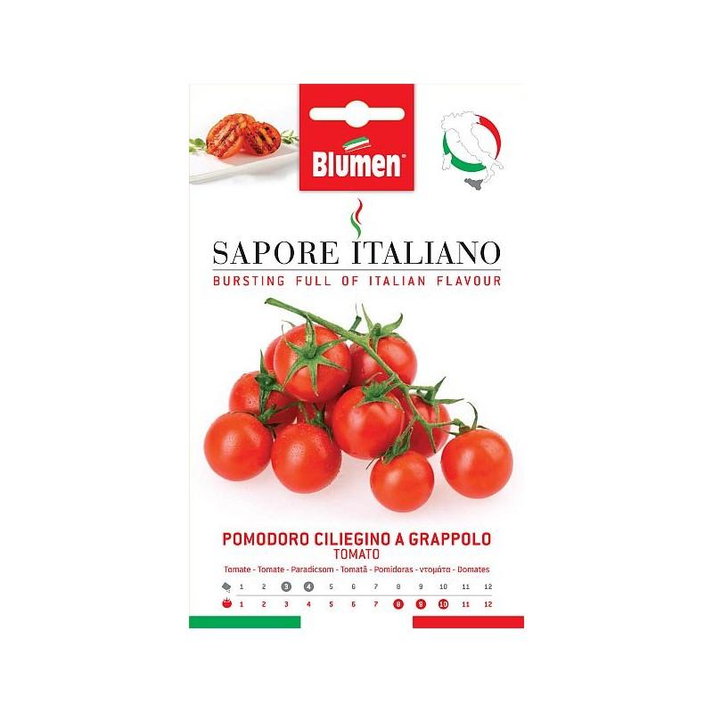 Tomate/Paradeiser Ciliegino a Grappoloa - Regionen Italiens
