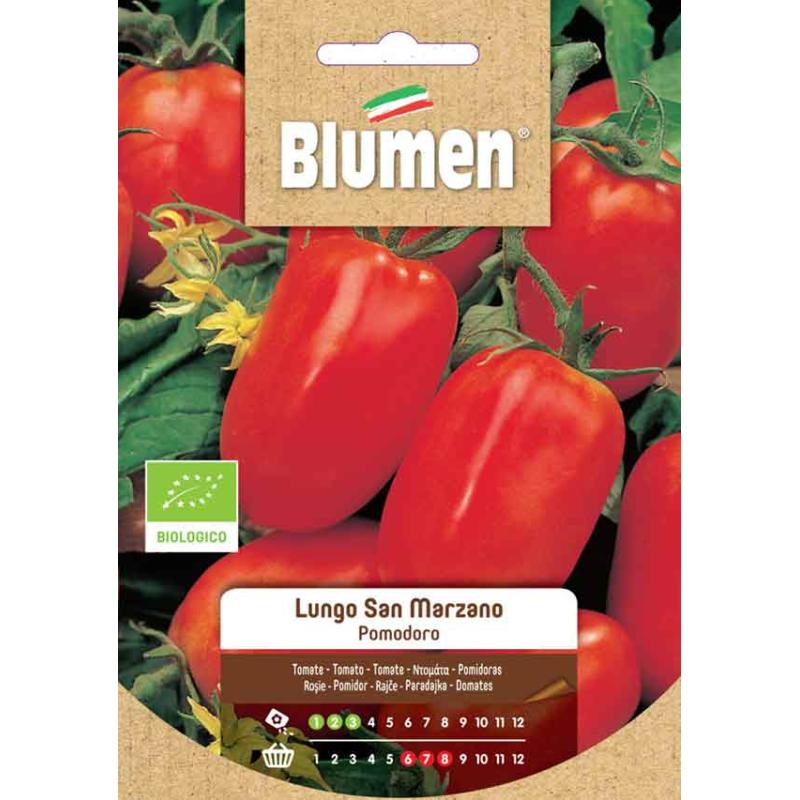 Paradeiser / Tomaten Lungo San Marzano BIO Samen - Regionen Italiens