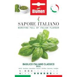 Basilicum Italiano Classicoaus der Region Ligurien - Vitamine