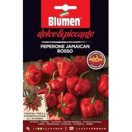 CHILI JAMAICAN ROSSO sehr scharf, gleichzeitig von fruchtigem, süßem Geschmack. - Regionen Italiens
