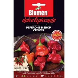 CHILI BISHOP CROWN Sehr gute Paprikaschote, dickfleischig und mit sehr aromatischen fruchtigem Geschmack. - Regionen Ita