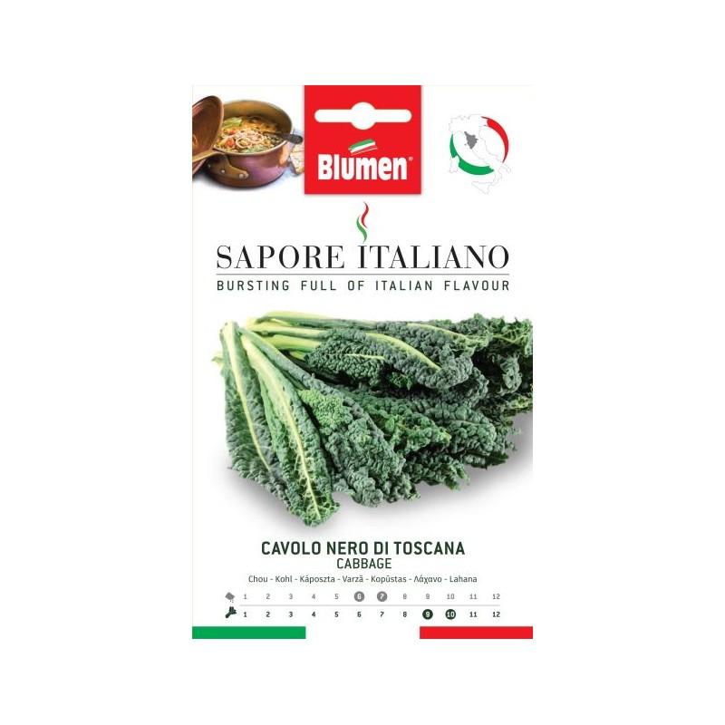Grünkohl Nero di Toscana mit langen blasigen Blättern. - Samenraritäten