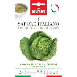 Wirsing / Kohl D' Asti S. Giovanni - Microgreens