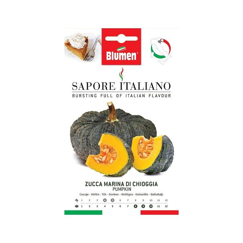 Grüne Zucchini Bolognese - Regionen Italiens