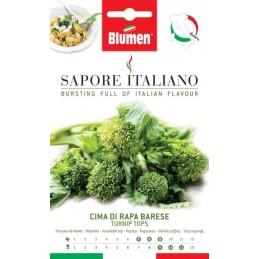 Stängelkohl - Cima di Rapa Barese - Blattgemüse Spezialität aus der Region Apulien. - Regionen Italiens
