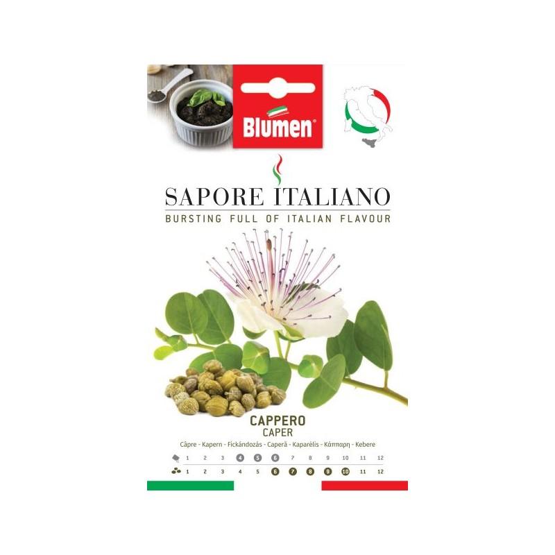Kapernstrauch Samen - Regionen Italiens
