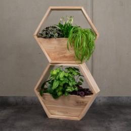 Holzwabe für Pflanzen,