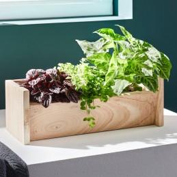 Holzregal für 3 Pflanzen