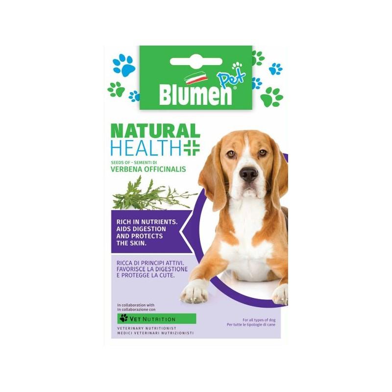 Verbena Officialis - Eisenkraut Anti-Stress, verdauungsfördernd, Hautpflege - zertifiziertes Bio Saatgut