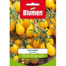 "Gelbe Tomaten/ Paradeiser ""Pera Giallo"" - Regionen Italiens"