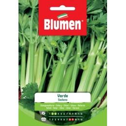- Gemüsespezialitäten