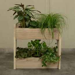 Holzregal für6 Pflanzen Recyceltes Massivholz vom Zedrachbaum - Regionen Italiens