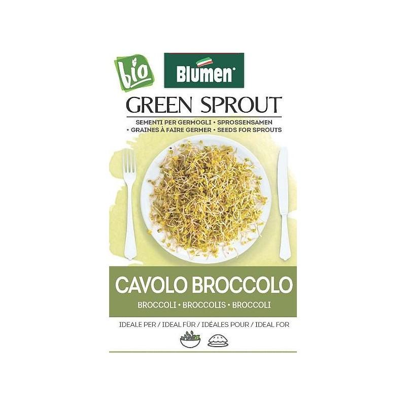 Broccoli- Sprossen BIO -