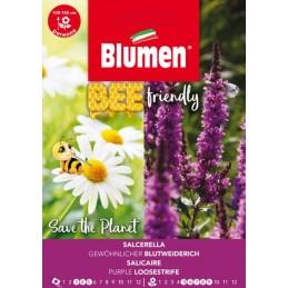 Bee friendly - Blutweiderich