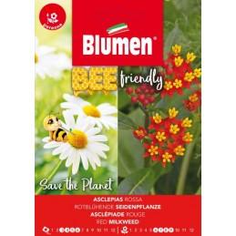 Bee friendly - Rotblühende Seidenpflanze