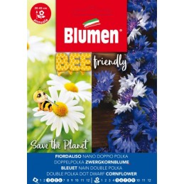 Bee friendly - Gefüllte Zwergkornblume