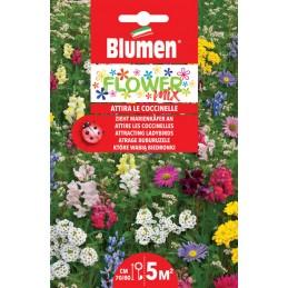 Flower Mix- Blumenwiese für Marienkäfer