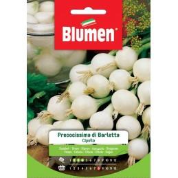 """Weiße Zwiebel """"Cipolla Precocissima di Barletta"""""""