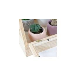 Design-Pflanzenhaus aus Massivholz Dekoratives Kakteen- / Sukkulentenhaus und Zimmergewächshaus für Anzucht und Stecklin