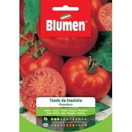 """Tomate / Paradeiser """"Tondo da Insalata"""""""