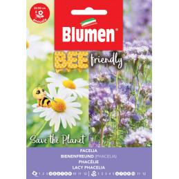 Bienenfreund-Phacelia