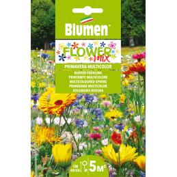 Flower Mix- Mischung aus mehrfarbigen Frühlingsblumen in der XXL Packung. - Regionen Italiens