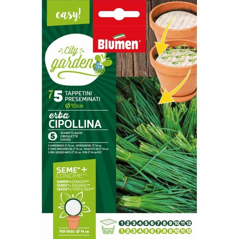 Packung Samenpad rund,Schnittlauch mit Samen und Dünger - Microgreens