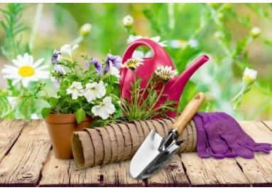 Praktisches und Nützliches für den Garten, Zubehör, Schädlingsbekämpfung und mehr.