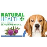 Heilmittel aus der Natur für die gesundheit und das Wohlbefinden Ihrer Tiere.