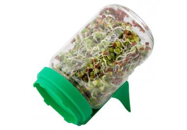 ▷ Keimglas - Keimschale für Sprossen