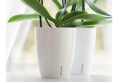 Töpfe für Orchideen und  Blumen