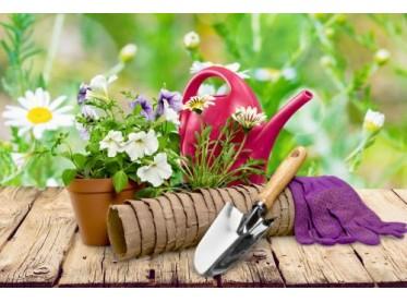 Für den Garten